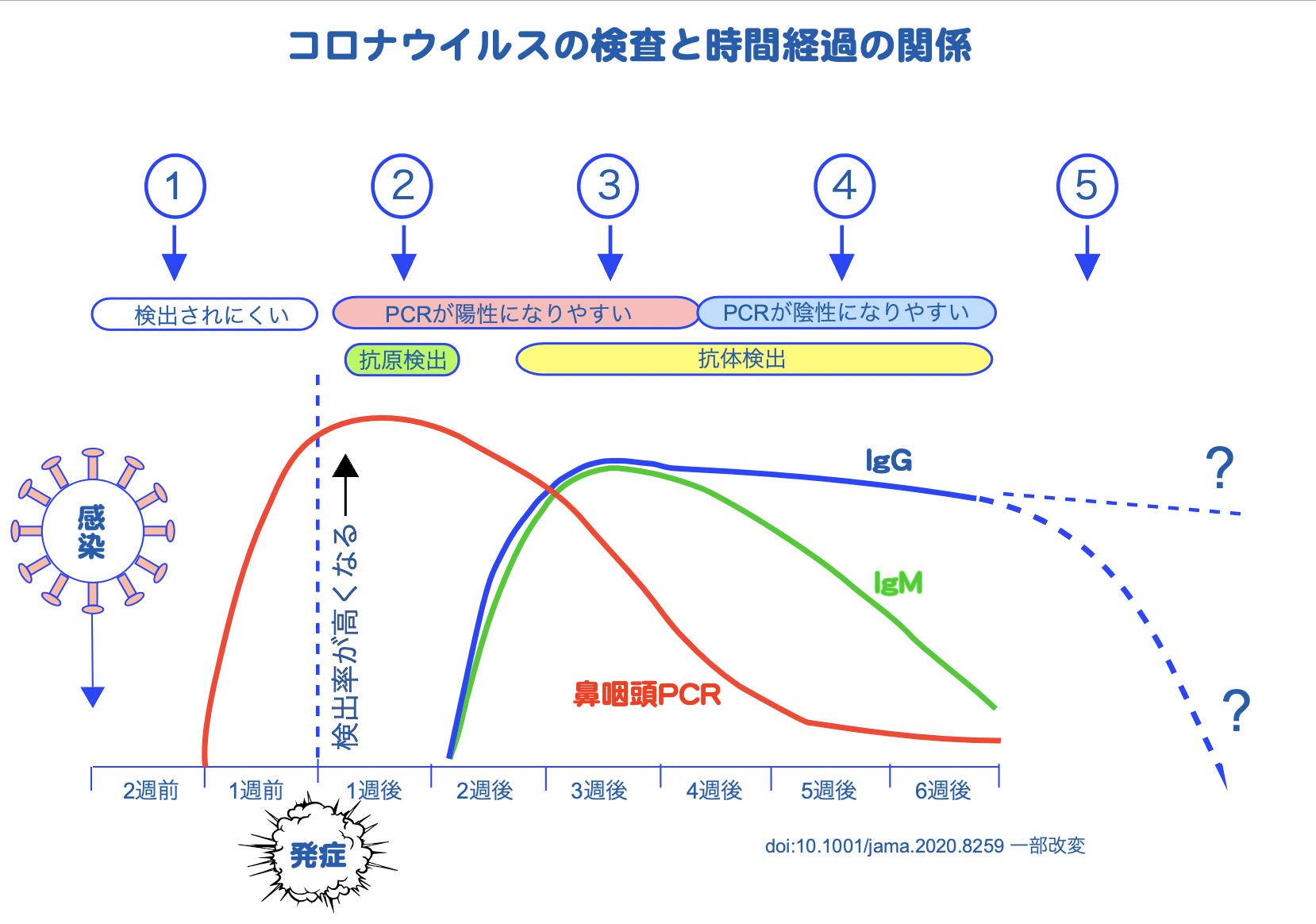 コロナグラフ